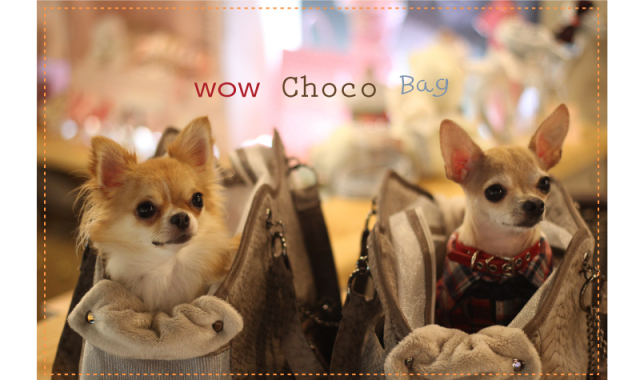 Louisdog(ルイスドッグ)WOW Choco Bag Grand ワウ パイソン チョコ バッグ