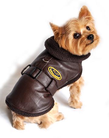 Doggie Design(ドギーデザイン)Brown Bomber Jacket Coat ブラウン ボンバー コート