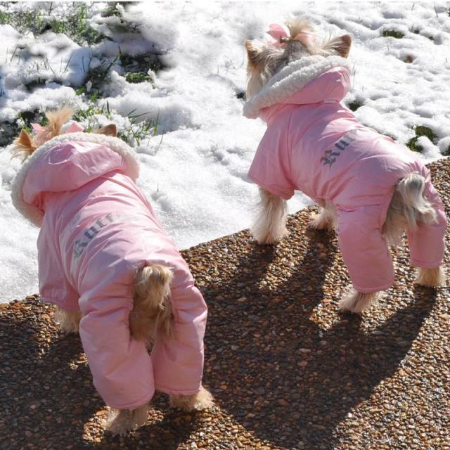 Doggie Design(ドギーデザイン)Pink Ruffin It Dog Snow Suit Harness ピンク ラフィン スノー スーツ