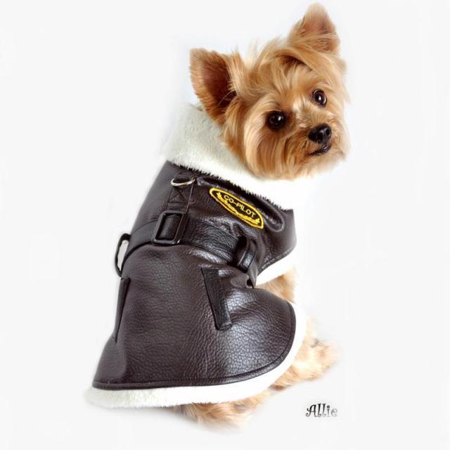 Doggie Design(ドギーデザイン)Brown Black Bomber Dog Coat ブラウン ブラック ボンバー コート