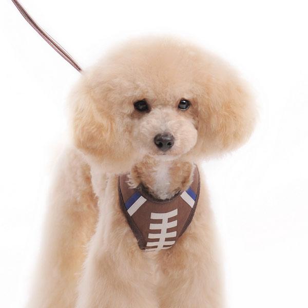 DOGO(ドゴ)EasyGO Football イージーゴー フットボール