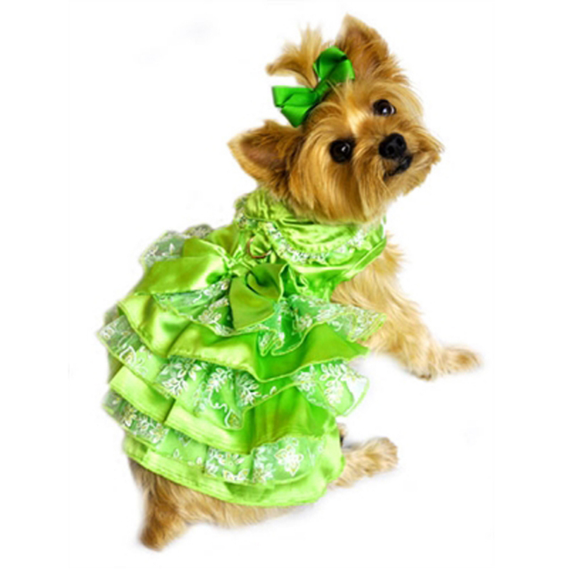 Doggie Design(ドギーデザイン)Green, White and Gold Organza Dress グリーン ホワイト ゴールド オーガンザ ドレス