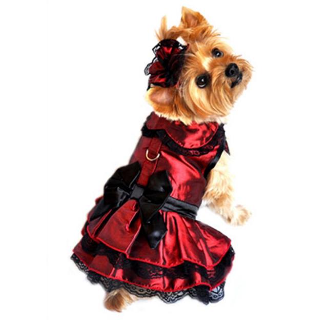 Doggie Design(ドギーデザイン)Iridescent Burgundy Satin and Black Lace Dress イリデセント バーガンディ サテン ドレス