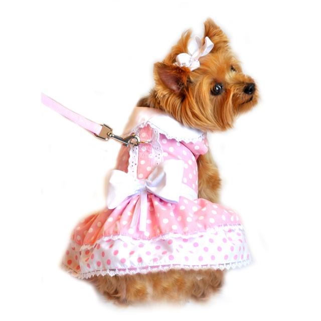 Doggie Design(ドギーデザイン)Polka Dot and Lace Dog Dress ポルカドット レース ドレス