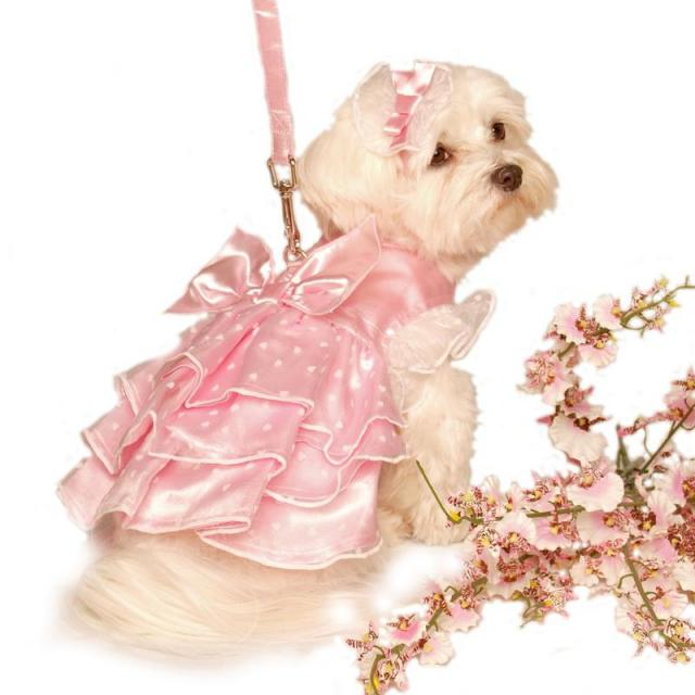 Doggie Design(ドギーデザイン)Sweetheart Pink Satin Garden Dress スイートハート ピンク ガーデン ドレス セット